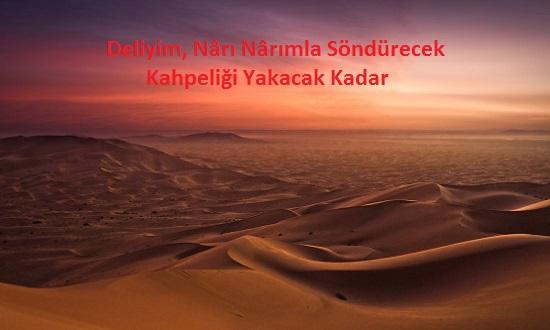 Mehmet Habib EKMEKÇİ