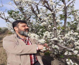 Mehmet Habib EKMEKÇİ Kimdir?